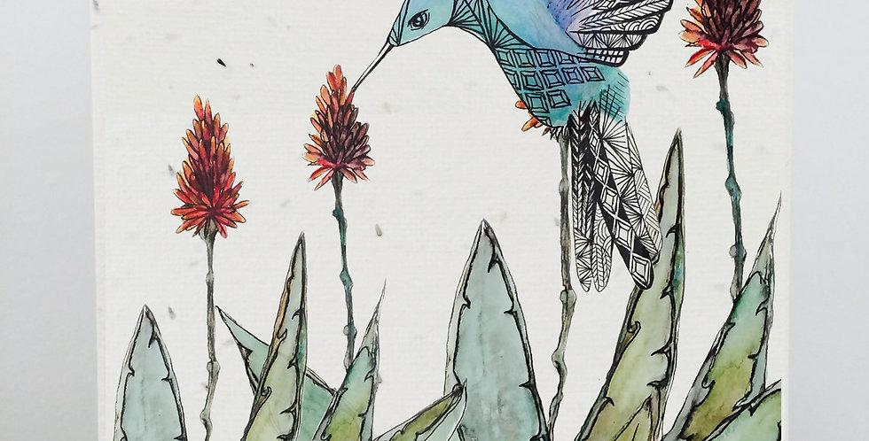 PLANTABLE GIFT CARD -- Aloe little bird