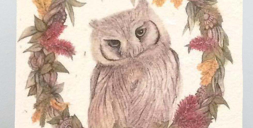 PLANTABLE GIFT CARD -- Christmas Range