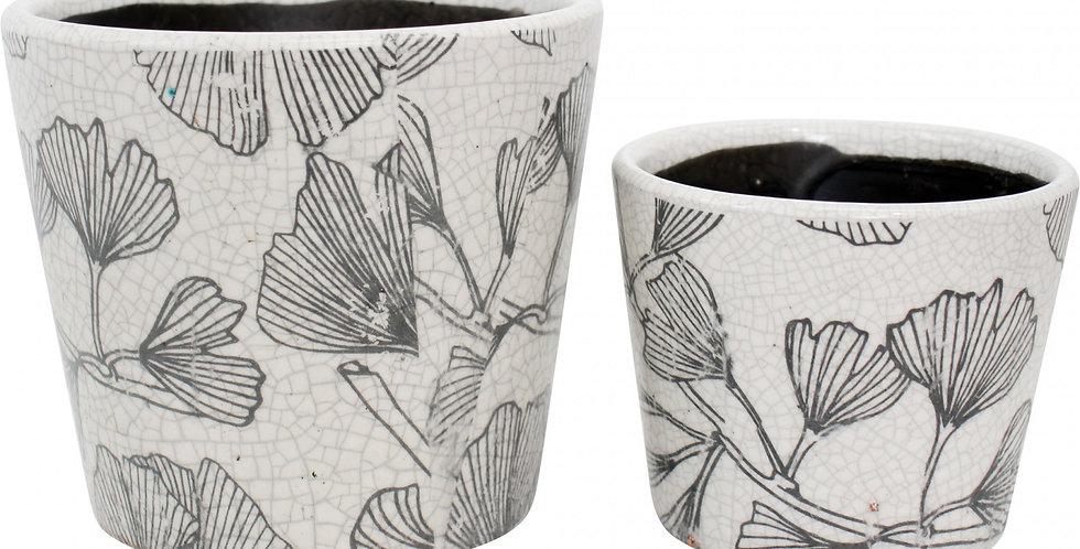 Ceramic Pots Ginko