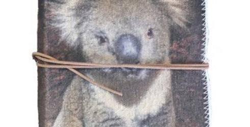 JOURNAL -- Australian Koala