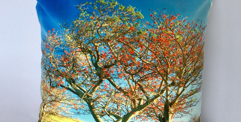 Cushion - Coral Tree