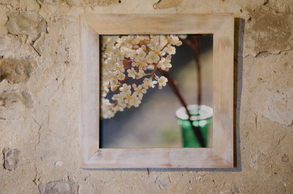 20 floral mood Susanne Paetsch photo