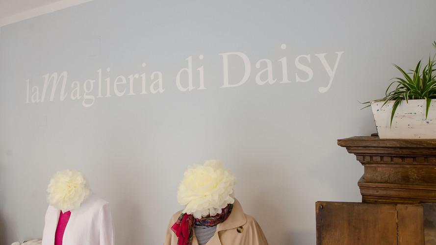 Daisy 10 - Susanne Paetsch photo