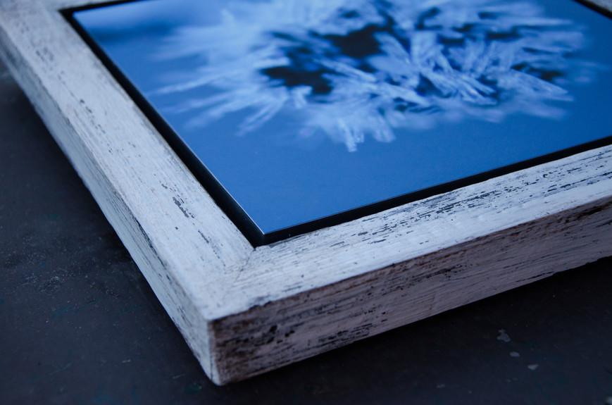 10 Frozen-Susanne Paetsch-Photography