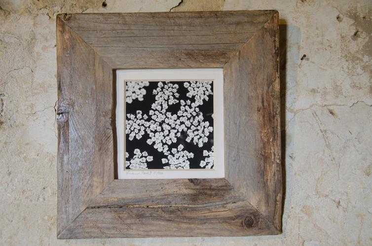 36 floral mood Susanne Paetsch photo
