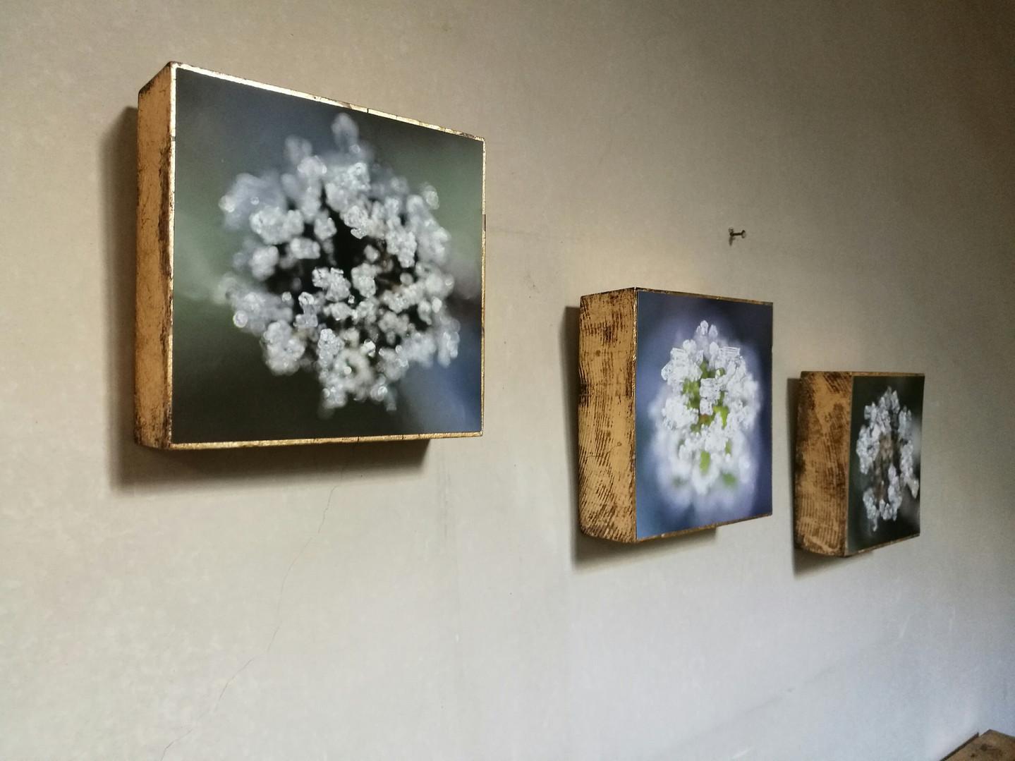 10 Cubes Susanne Paetsch photo