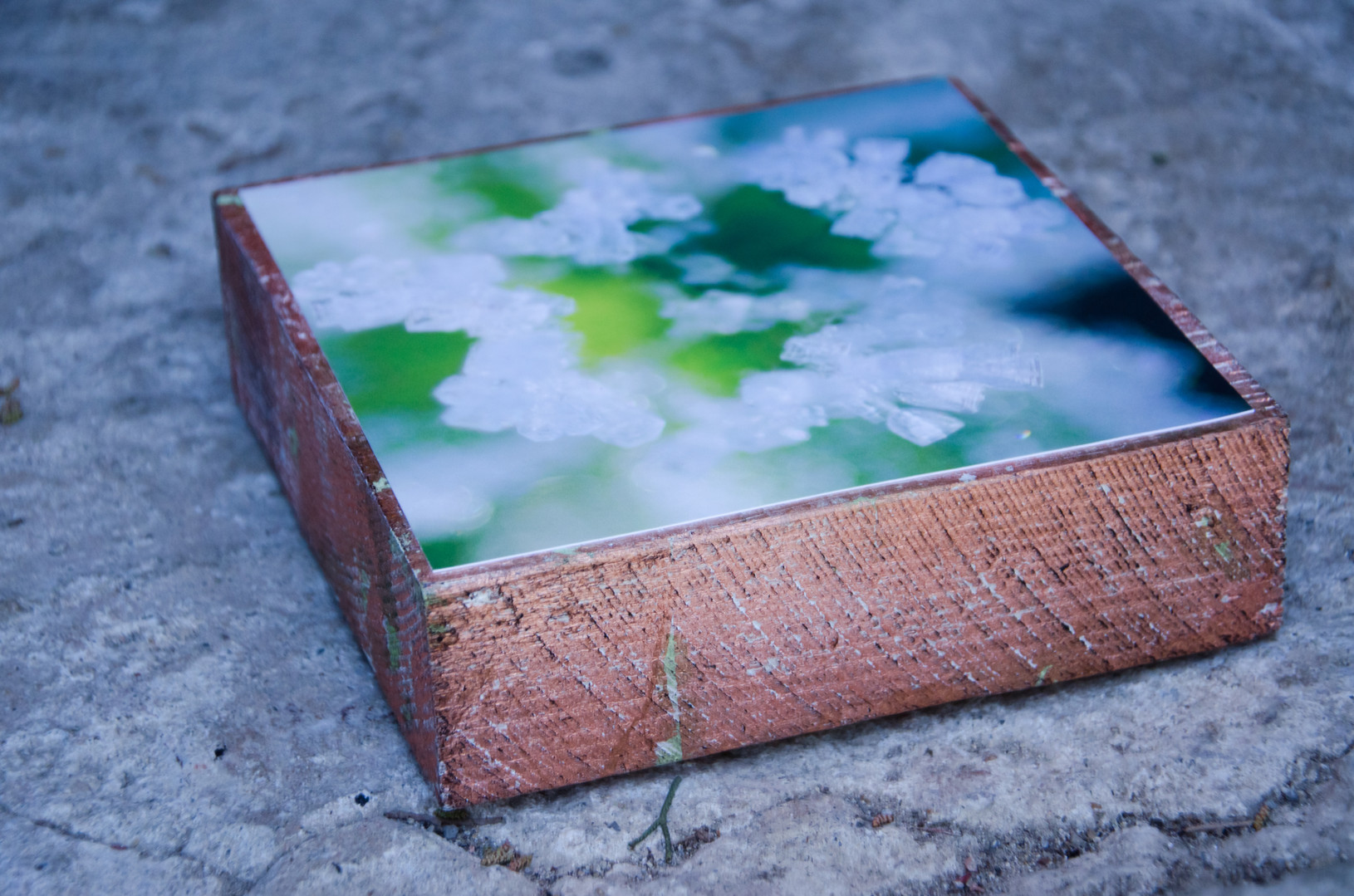 09 Cubes Susanne Paetsch photo