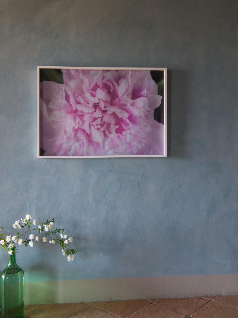 19 Floral mood Susanne Paetsch photo