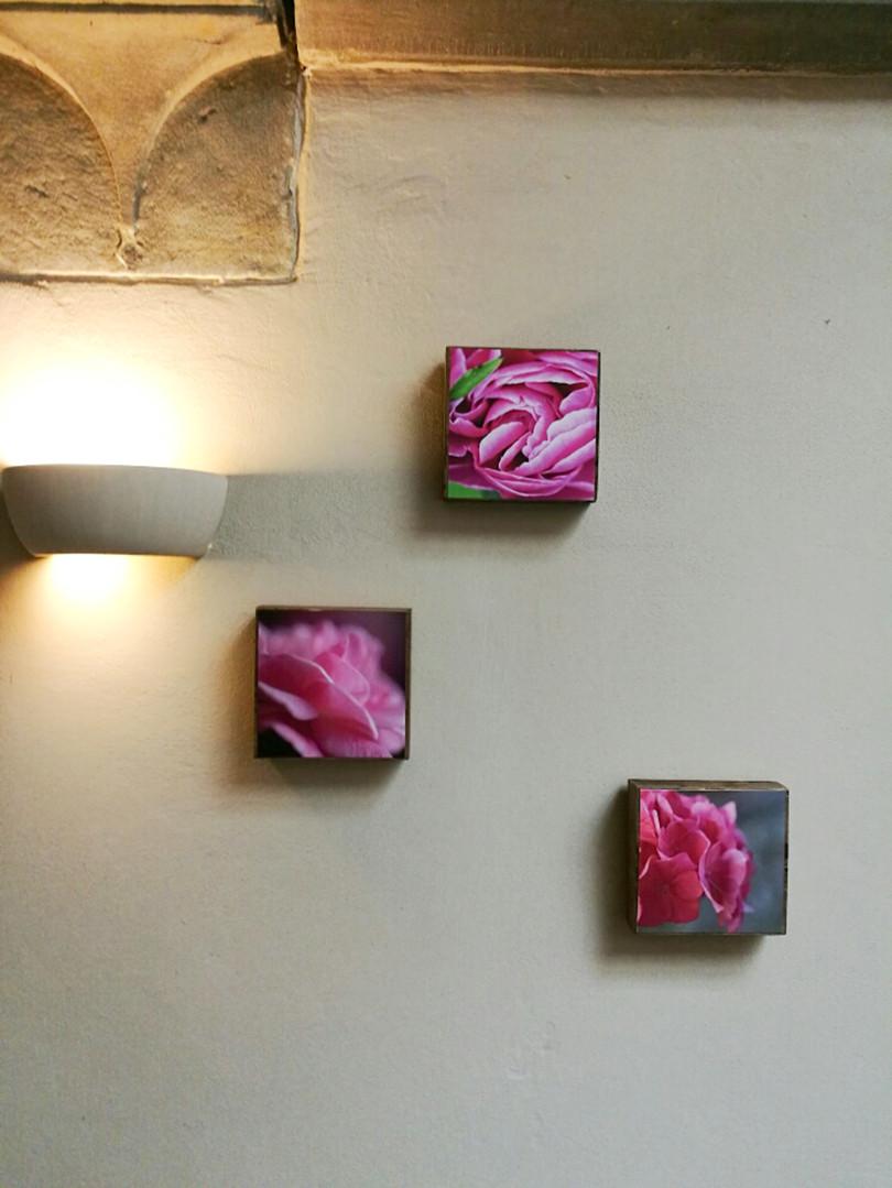 16 Floral mood Susanne Paetsch photo