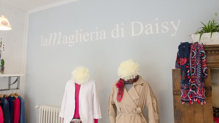 Daisy 03 - Susanne Paetsch photo