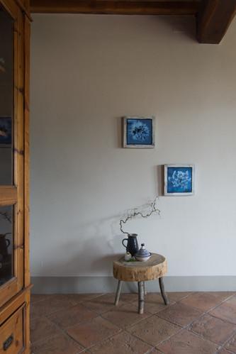 12 Frozen-Susanne Paetsch-Photography