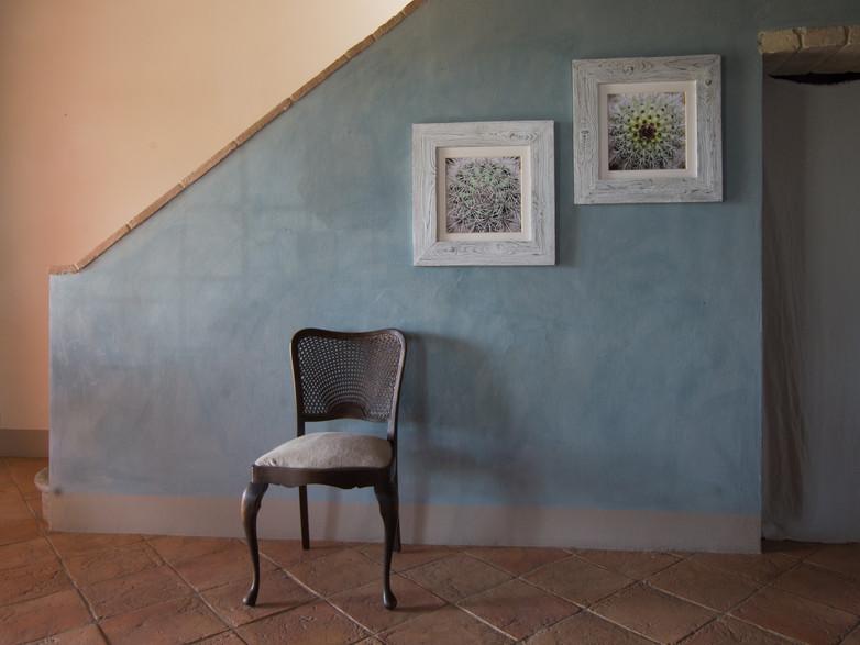 12 Cactus-Susanne Paetsch-Fine Art Photography