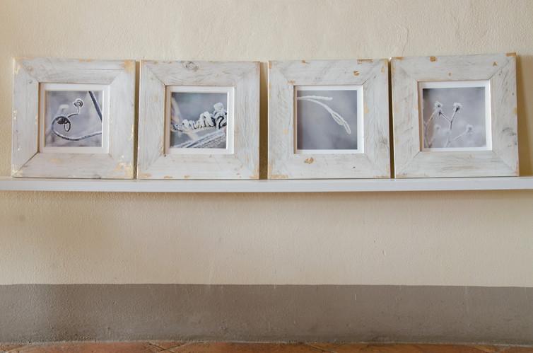 26 Frozen  - Susanne Paetsch photo