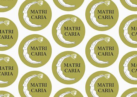 matricaria portfolio2.jpg