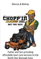 Chopp'n Blades 255 Lawn Care
