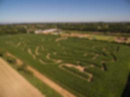 Aerial view of aMaizin Adventure Park ri
