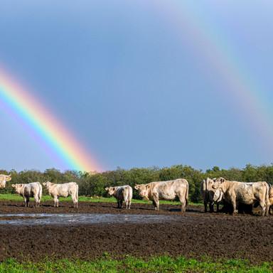 Double rainbow, France