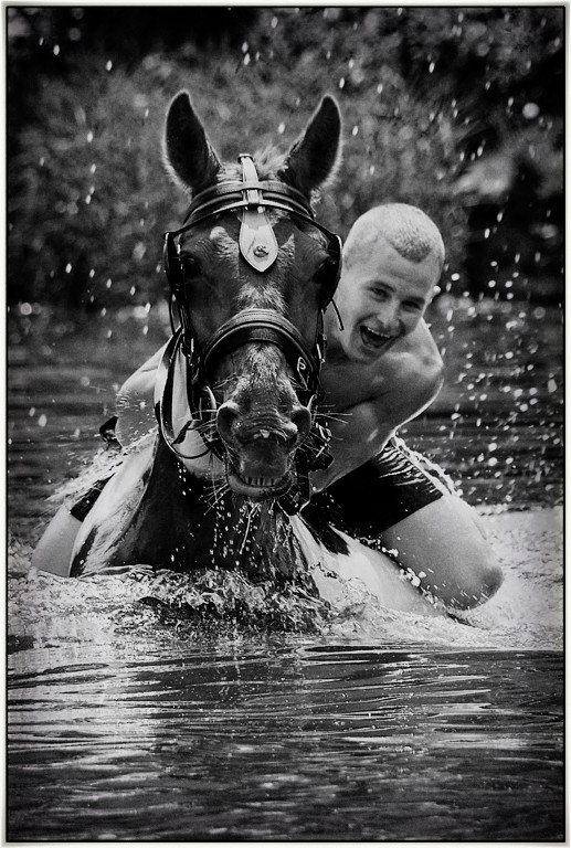 """Highly Commended - """"Horseplay"""" by Alan Errington"""
