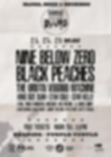 Blues Festival Purple Turtle 2019 poster