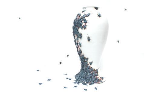 Stink Bug Vase