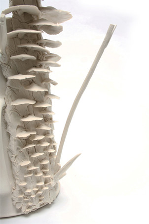 Mushroom Pitcher, Detail