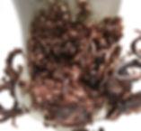 Bottom Feeders Detail