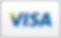 Visa-Curved_70599.png
