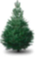 48_Christmas tree.png