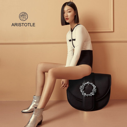 aristotle bag