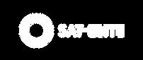 SatElite_Logo_Unstacked_White.png