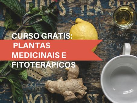 Curso Grátis sobre Plantas Medicinais e Fitoterápicos