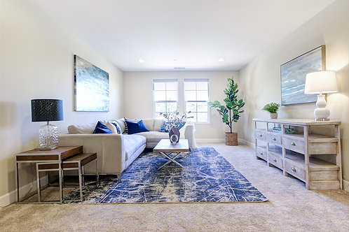 Petite~ Home Staging LIVING RM ONLY package