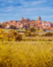 Healthy Stay Catalunya.jpg