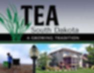 TeaCity.jpg
