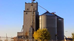 Tea's last grain elevator will be demolished in a controlled burn