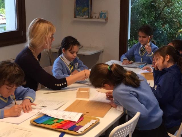 Primary Class