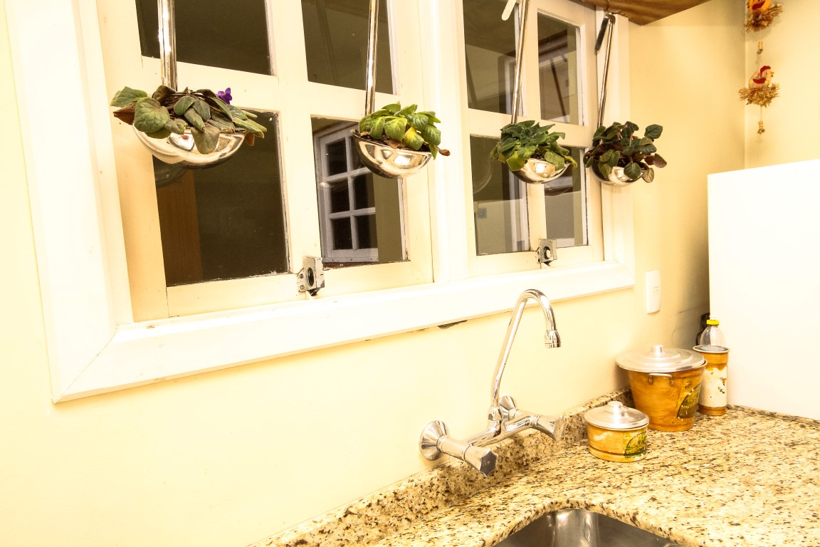 Arranjos de flores cozinha
