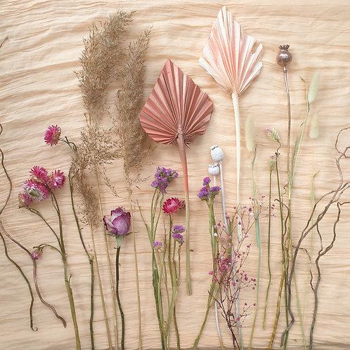 Dried Flower Selection - Malibu Beach
