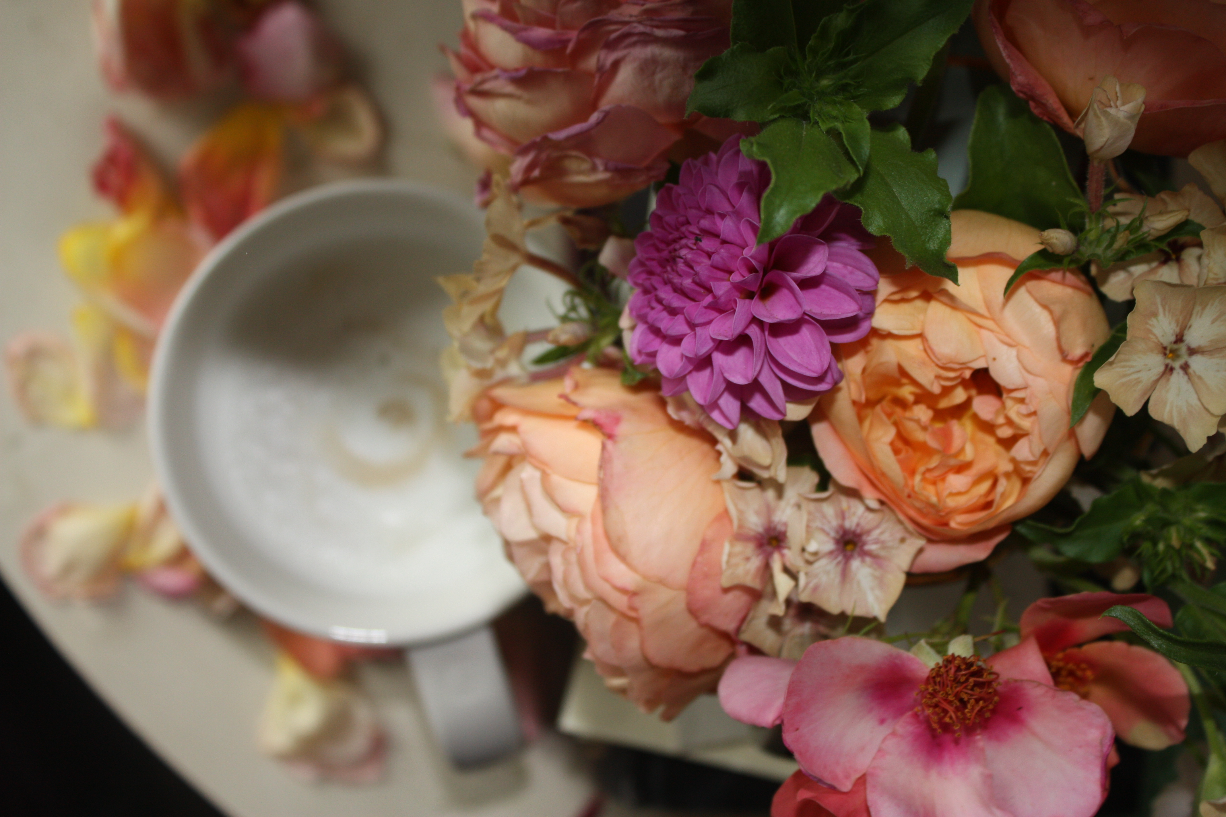 Hampshire Florist