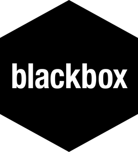 Blackbox Connect, a Silicon Valley based two-week residential program