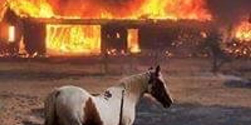 VIRTUAL All- Hazards/Fireline Safety Course