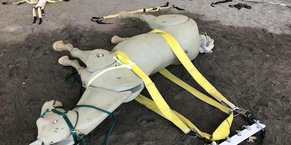 Animal Technical Rescue- Technician Level (in person)