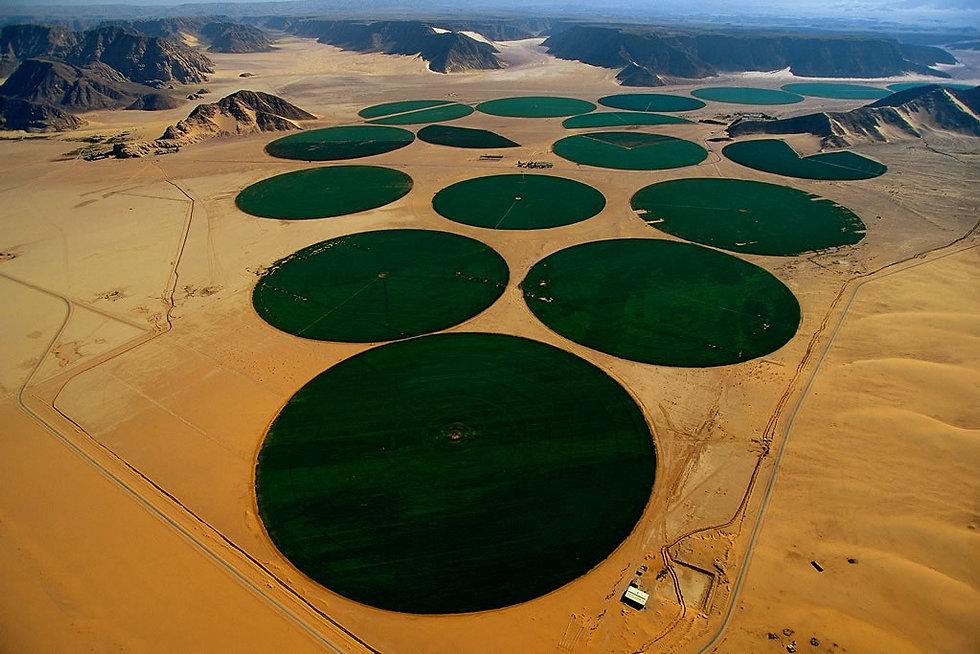 Irrigation_par_aspersion_dans_le_désert_