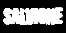 salvione_logo1.png