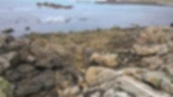 côte rocheuse granitique