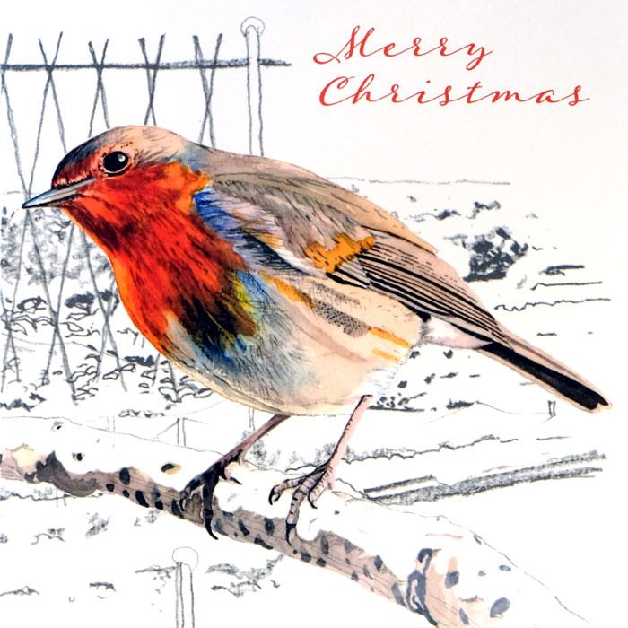 Christmas-Robin1