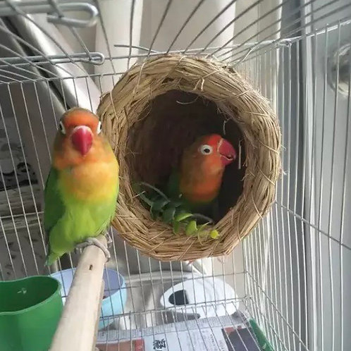 Brand Handmade Straw Natural Bird Nest