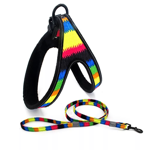 Pet Safety Hardness and Leash