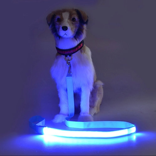 Wholesale Road safety dog leashes with led light (1st gen)