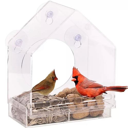 Handmade Transparent parrot feeder.